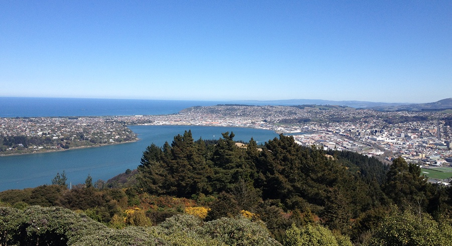 view from Signal Hill Dunedin sightseeing