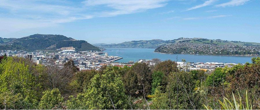 Unity Park Lookout overlooking Dunedin City.